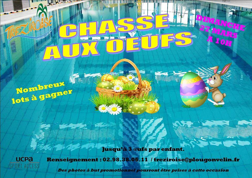 Chasse l 39 oeuf finist re r cr atiloups finist re for Carhaix piscine