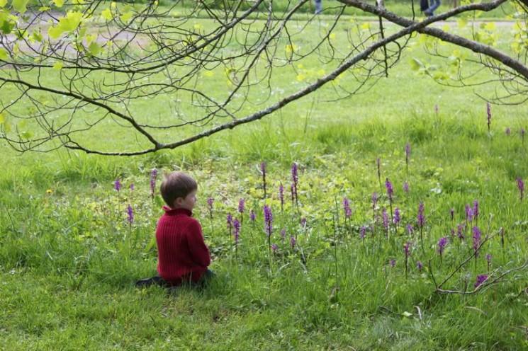 Enfant au jardin