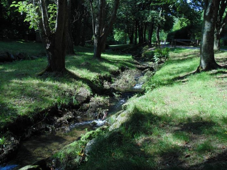 Le parc public du Vallon