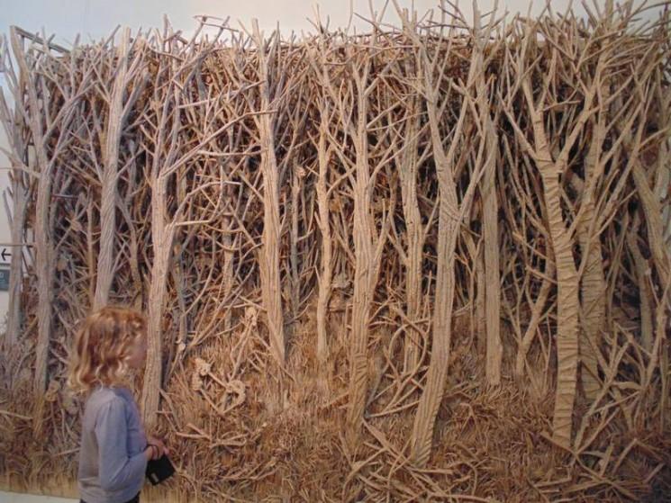 Forêt de carton
