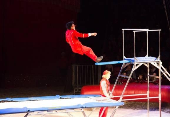 Le trampoline comique