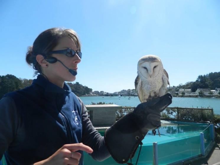 Spectacle d'oiseaux à Aquashow