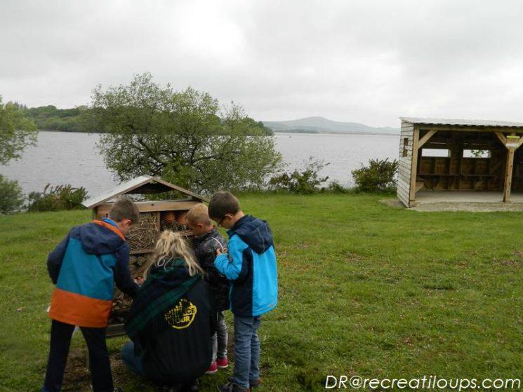 Activités nature devant le lac