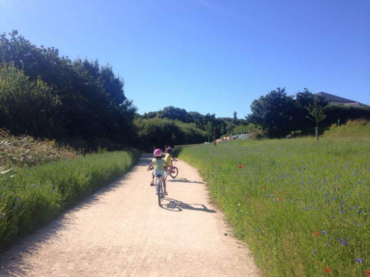 Idéal pour les balades à vélo
