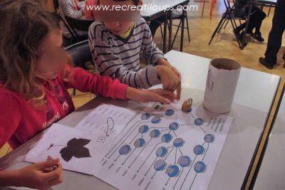 cle-determination-arbres-pour-enfants