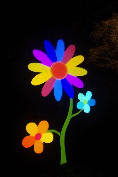 Des fleurs lumineuses dans le parc