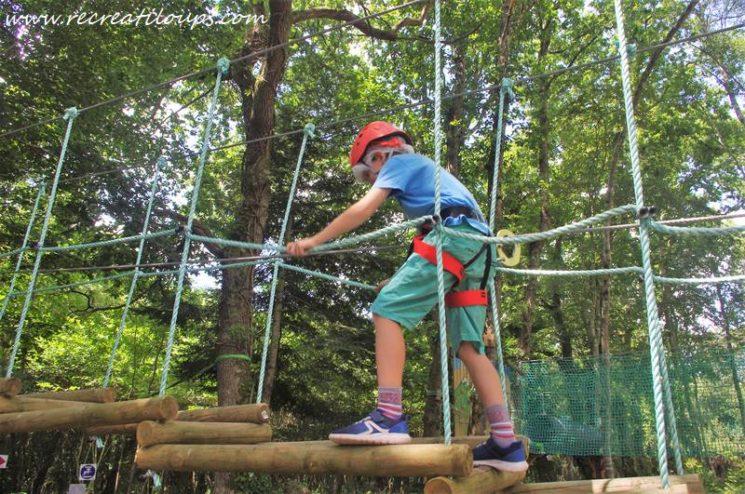 A l'aventure dans les arbres
