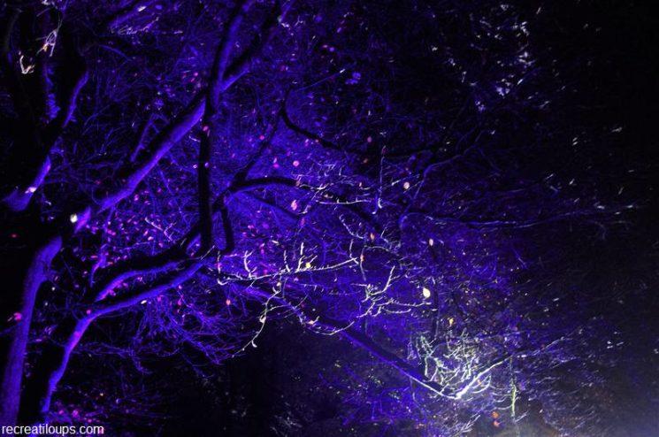 Illuminations du Parc