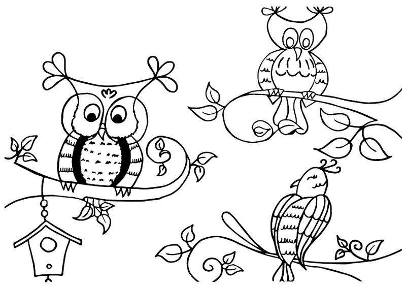 Les Oiseaux Coloriage Gratuit A Imprimer Recreatiloups Finistere