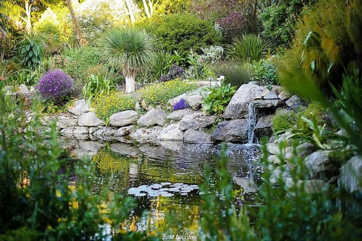 Balade au Jardin exotique et botanique