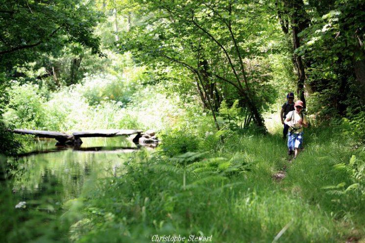 Balade nature en Pays de Morlaix